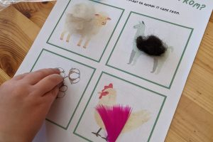 Foundation-year 2 resources